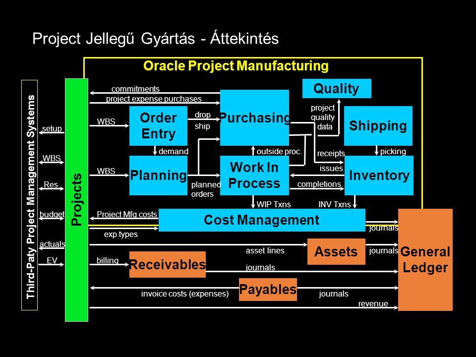 Project Jellegű Gyártás - Áttekintés