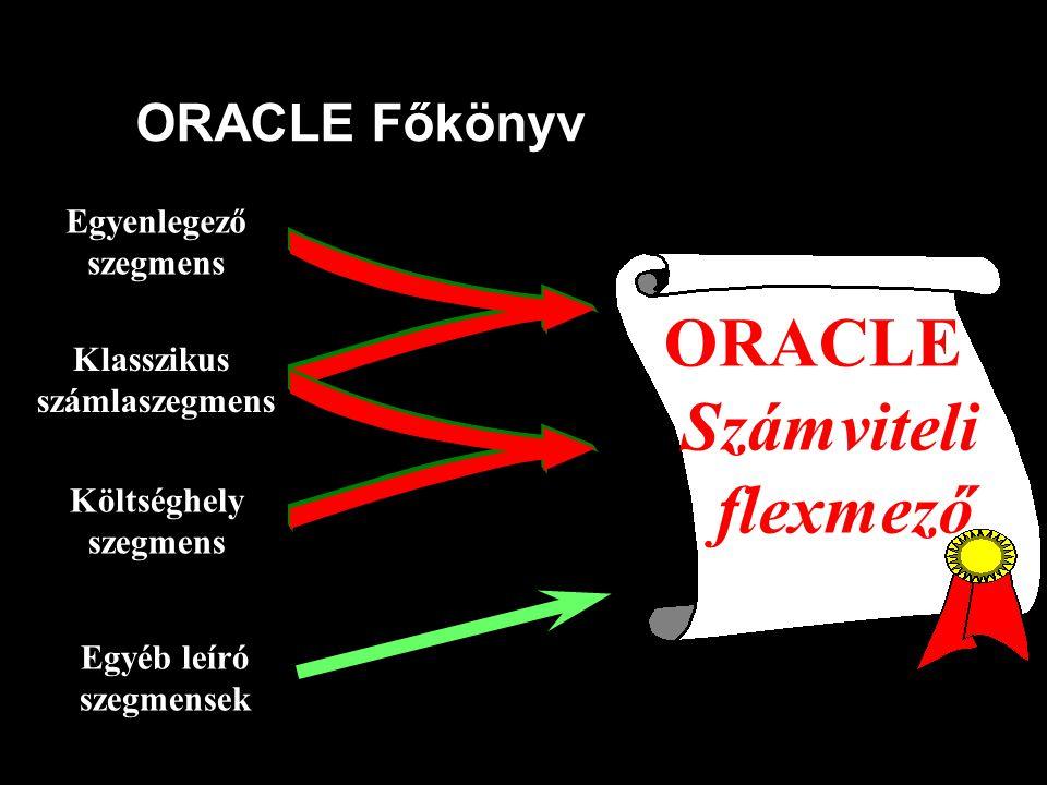 ORACLE Számviteli flexmező ORACLE Főkönyv Egyenlegező Klasszikus