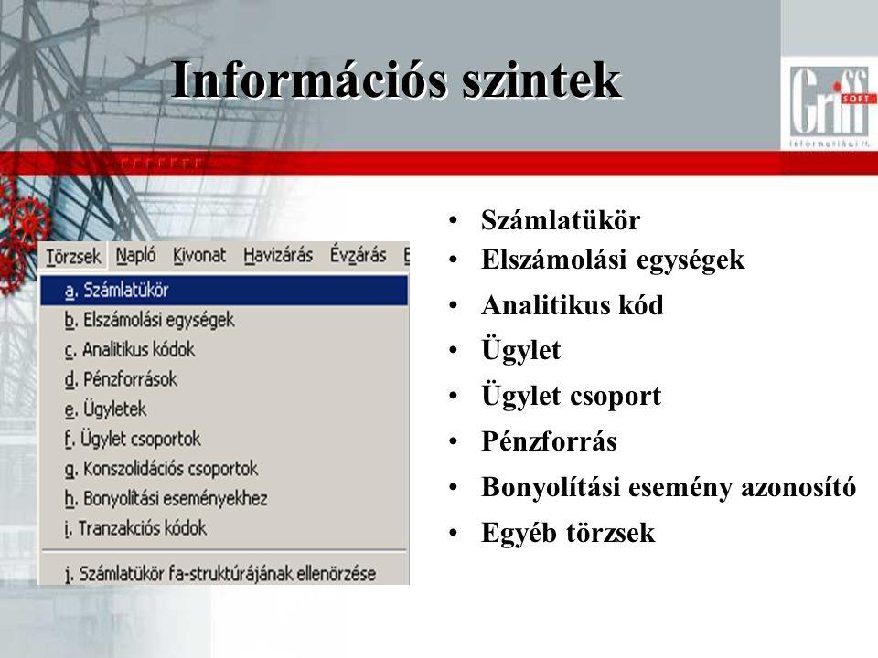Információs szintek Számlatükör Elszámolási egységek Analitikus kód