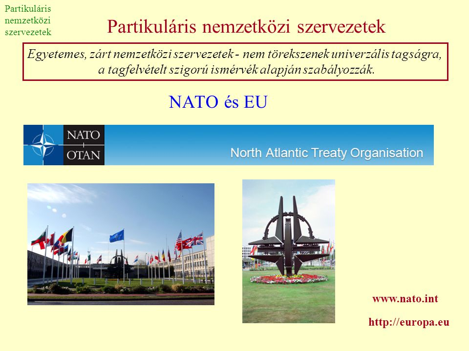 Partikuláris nemzetközi szervezetek