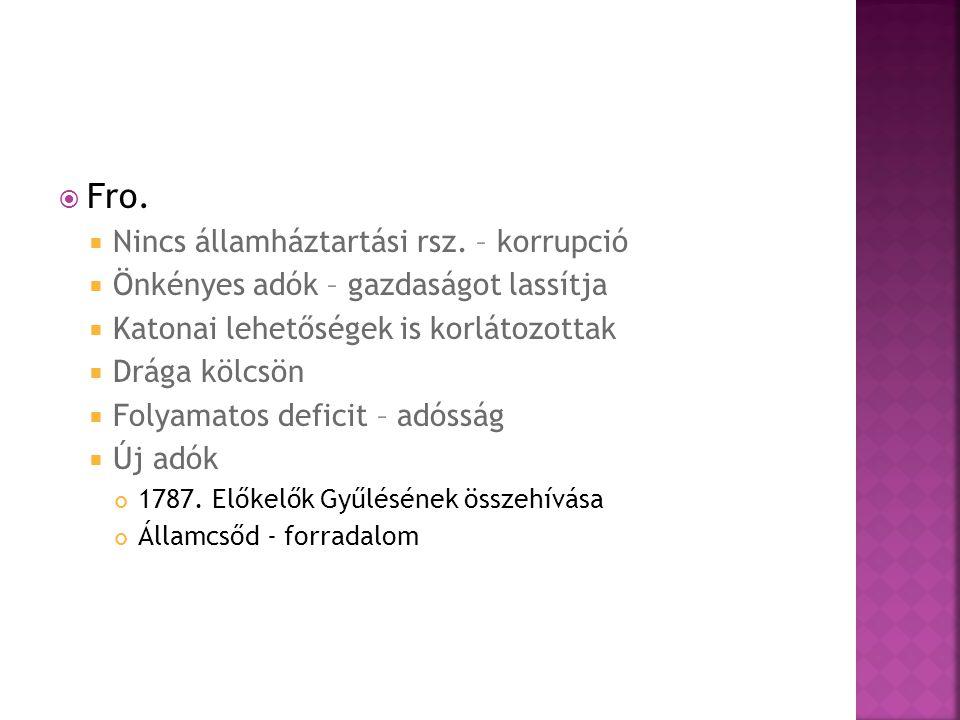 Fro. Nincs államháztartási rsz. – korrupció