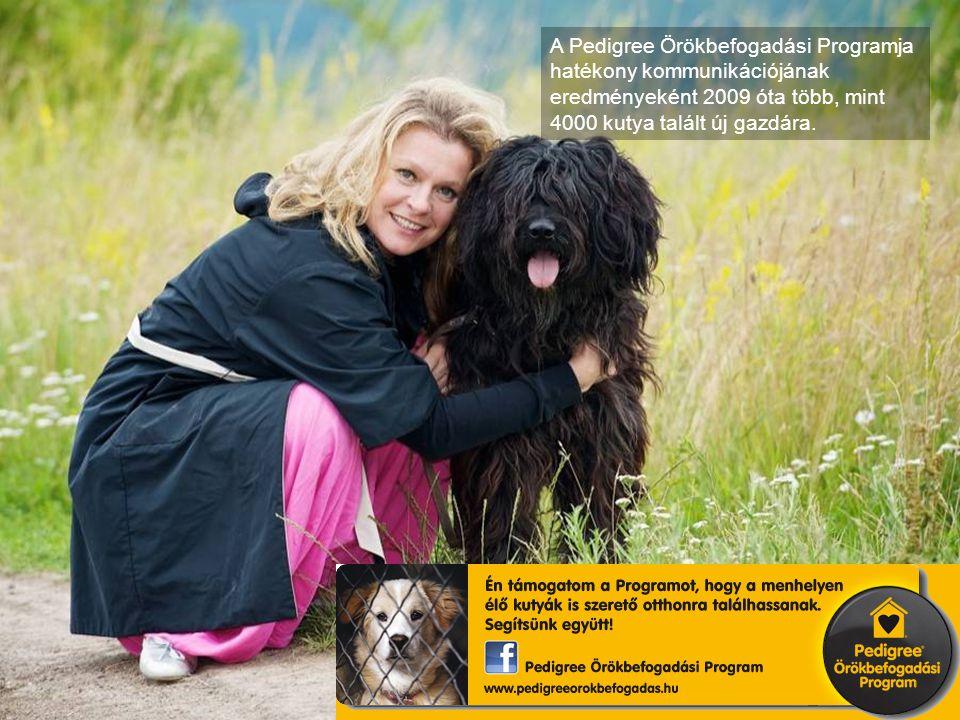 A Pedigree Örökbefogadási Programja hatékony kommunikációjának eredményeként 2009 óta több, mint 4000 kutya talált új gazdára.