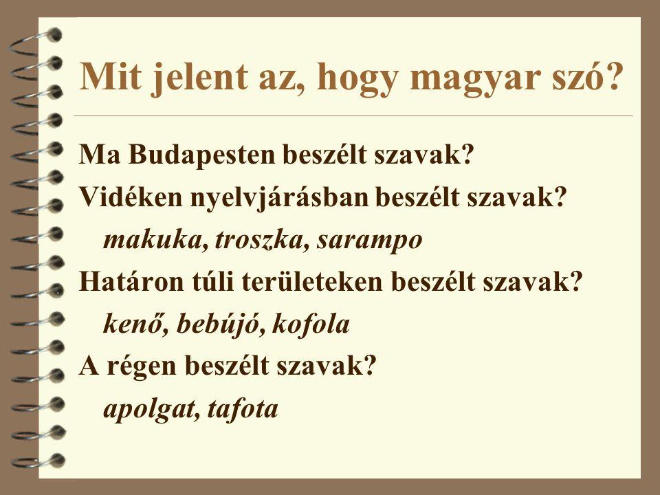 Mit jelent az, hogy magyar szó