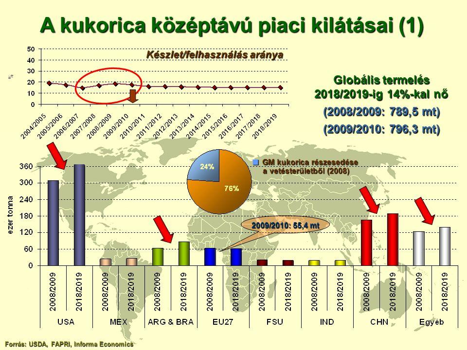 A kukorica középtávú piaci kilátásai (1)