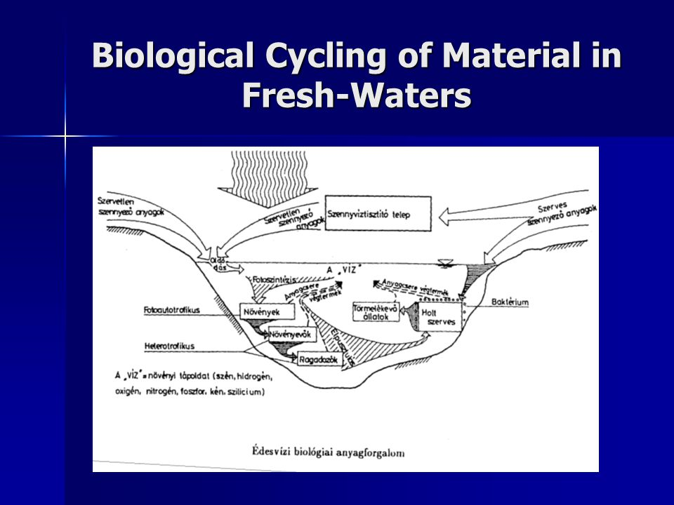 Biological Cycling of Material in Fresh-Waters