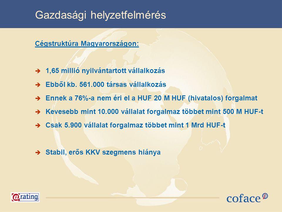 Gazdasági helyzetfelmérés