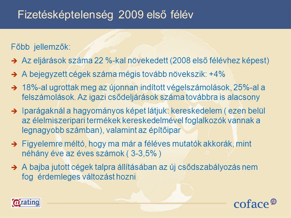Fizetésképtelenség 2009 első félév