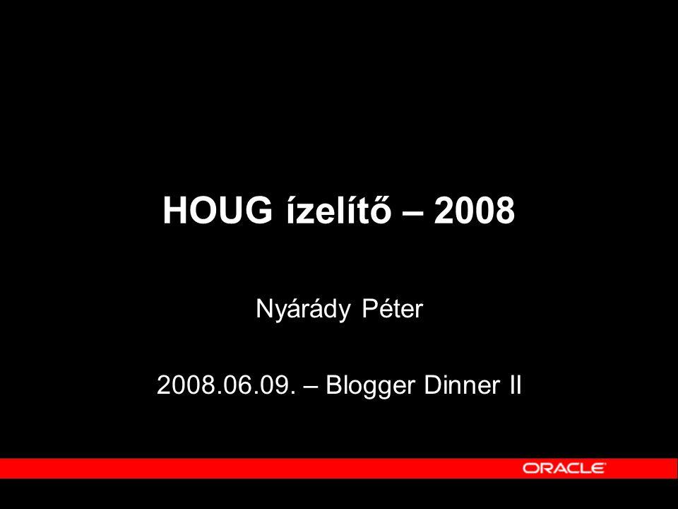 Nyárády Péter 2008.06.09. – Blogger Dinner II