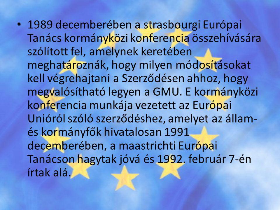 1989 decemberében a strasbourgi Európai Tanács kormányközi konferencia összehívására szólított fel, amelynek keretében meghatároznák, hogy milyen módosításokat kell végrehajtani a Szerződésen ahhoz, hogy megvalósítható legyen a GMU.