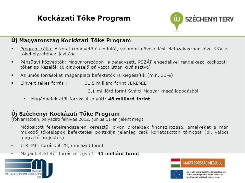 Kockázati Tőke Program
