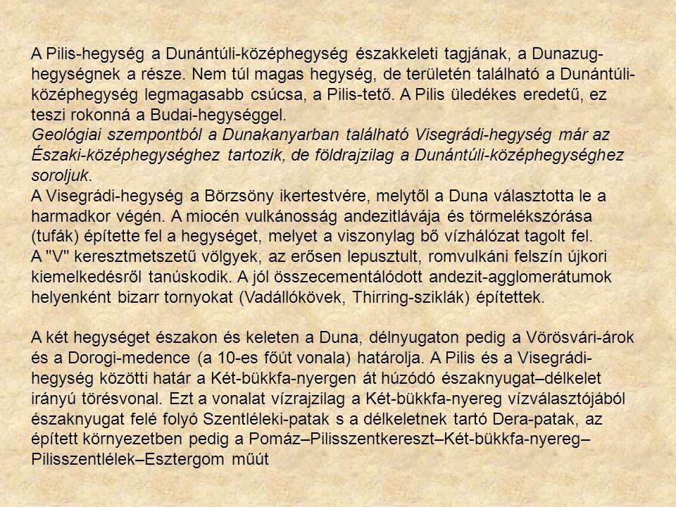 A Pilis-hegység a Dunántúli-középhegység északkeleti tagjának, a Dunazug-hegységnek a része. Nem túl magas hegység, de területén található a Dunántúli-középhegység legmagasabb csúcsa, a Pilis-tető. A Pilis üledékes eredetű, ez teszi rokonná a Budai-hegységgel.