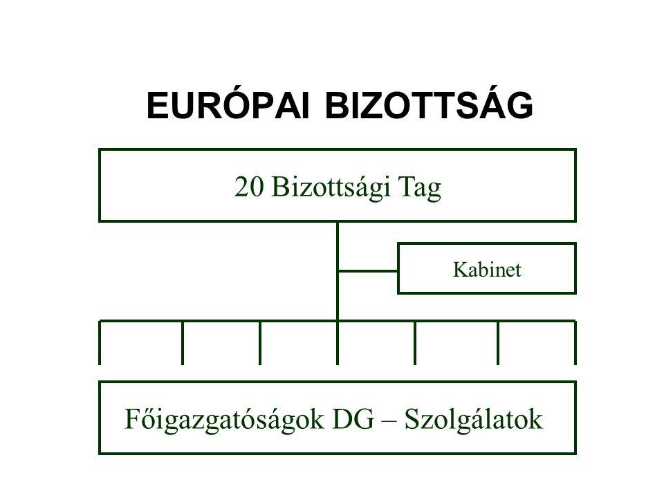 Főigazgatóságok DG – Szolgálatok