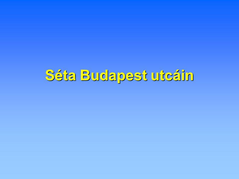 Séta Budapest utcáin