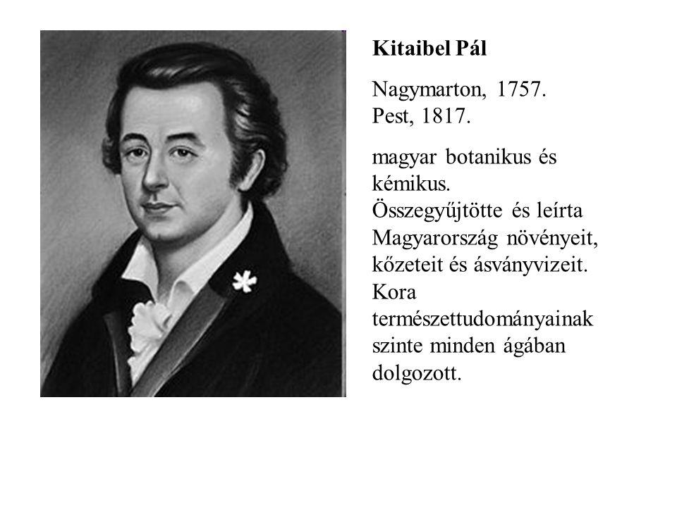Kitaibel Pál Nagymarton, 1757. Pest, 1817.