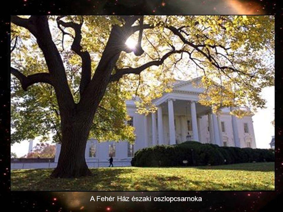 A Fehér Ház északi oszlopcsarnoka