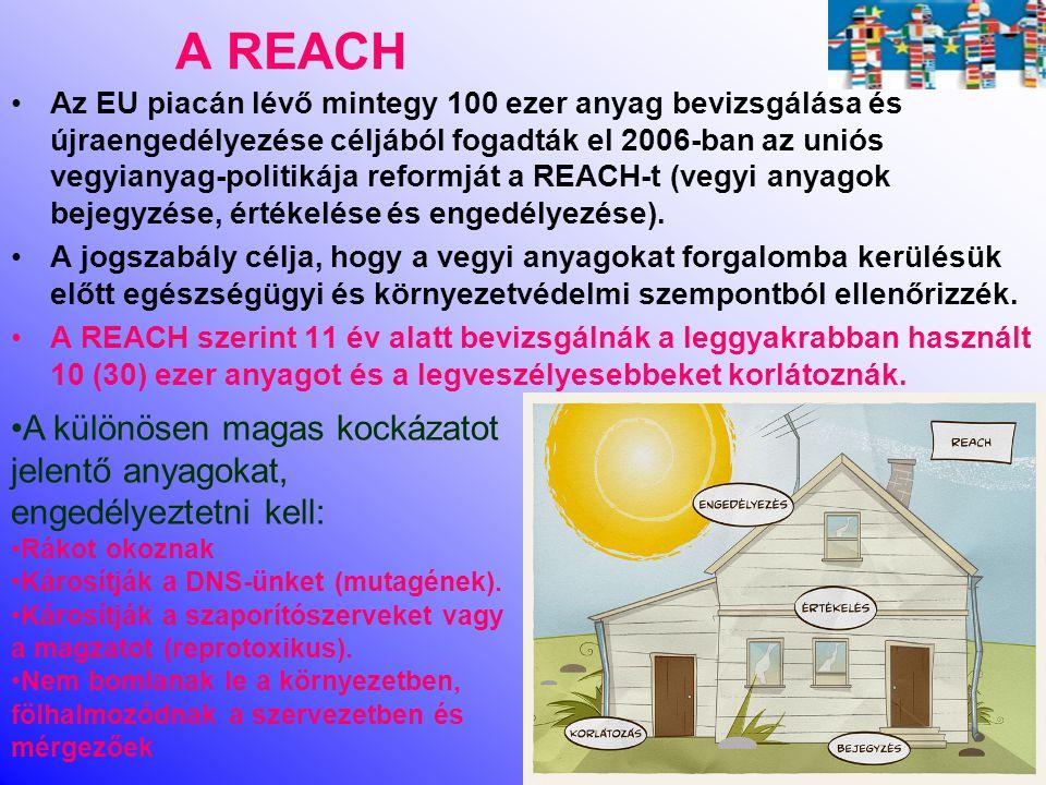 A REACH