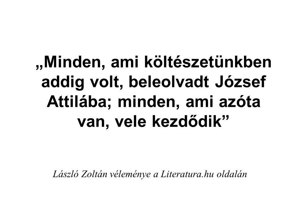 László Zoltán véleménye a Literatura.hu oldalán