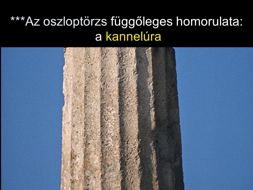 ***Az oszloptörzs függőleges homorulata: a kannelúra