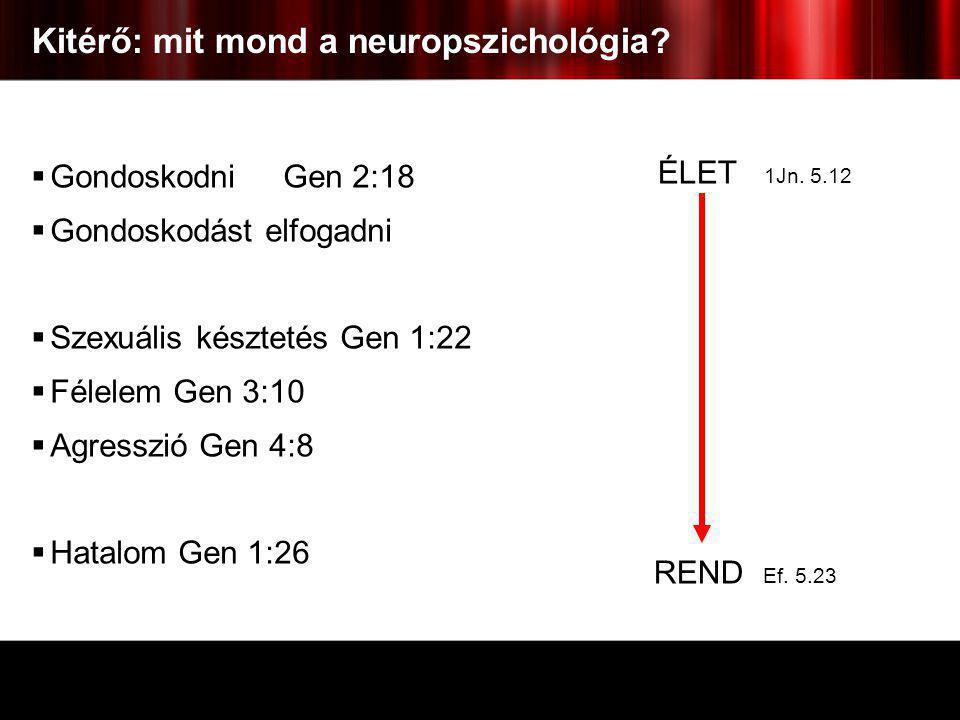 Kitérő: mit mond a neuropszichológia