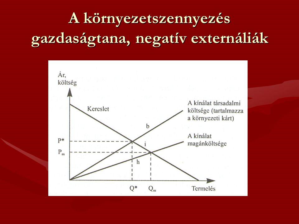 A környezetszennyezés gazdaságtana, negatív externáliák