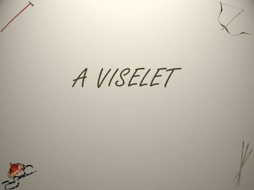 A VISELET