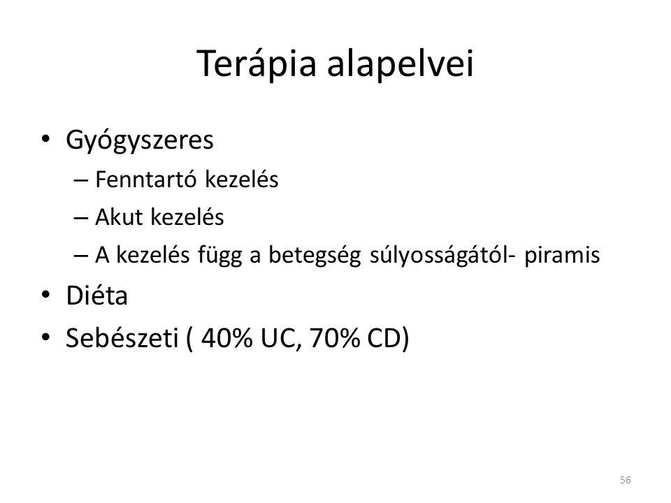 Terápia alapelvei Gyógyszeres Diéta Sebészeti ( 40% UC, 70% CD)