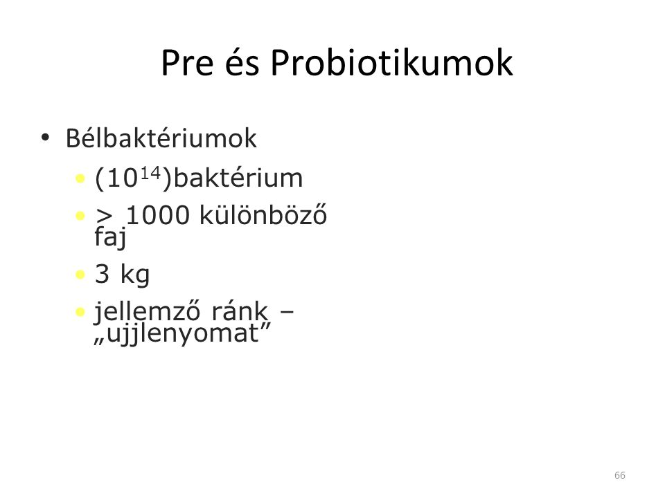 Pre és Probiotikumok Bélbaktériumok (1014)baktérium