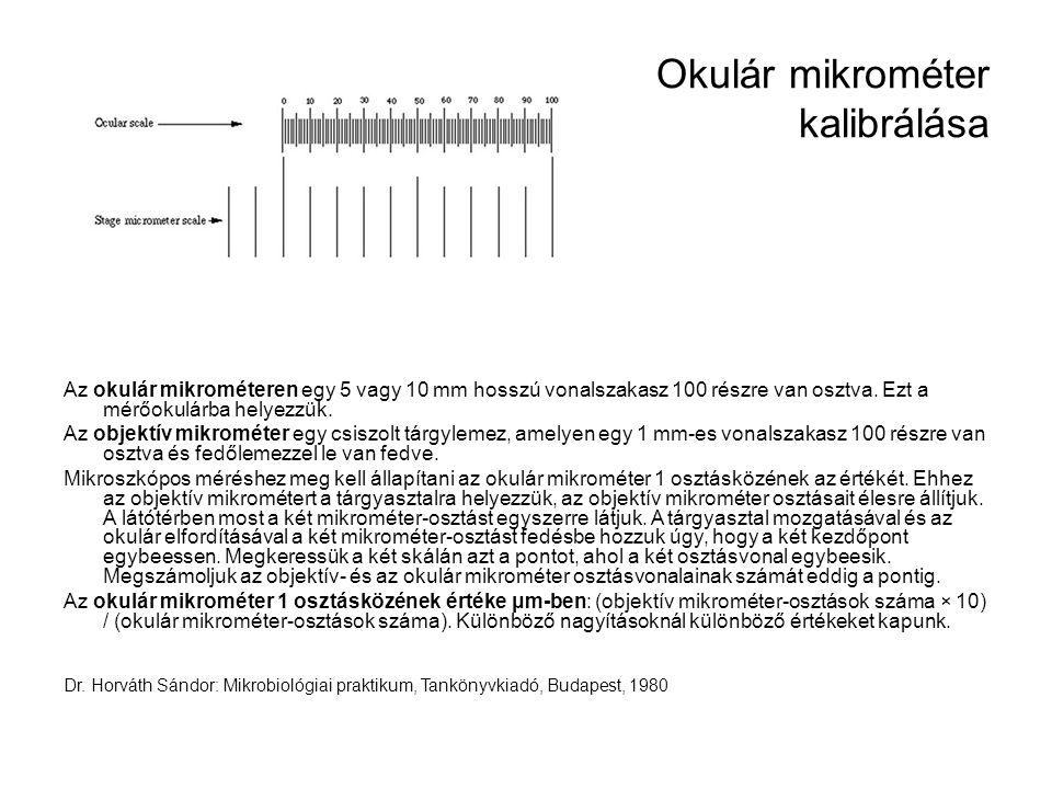 Okulár mikrométer kalibrálása