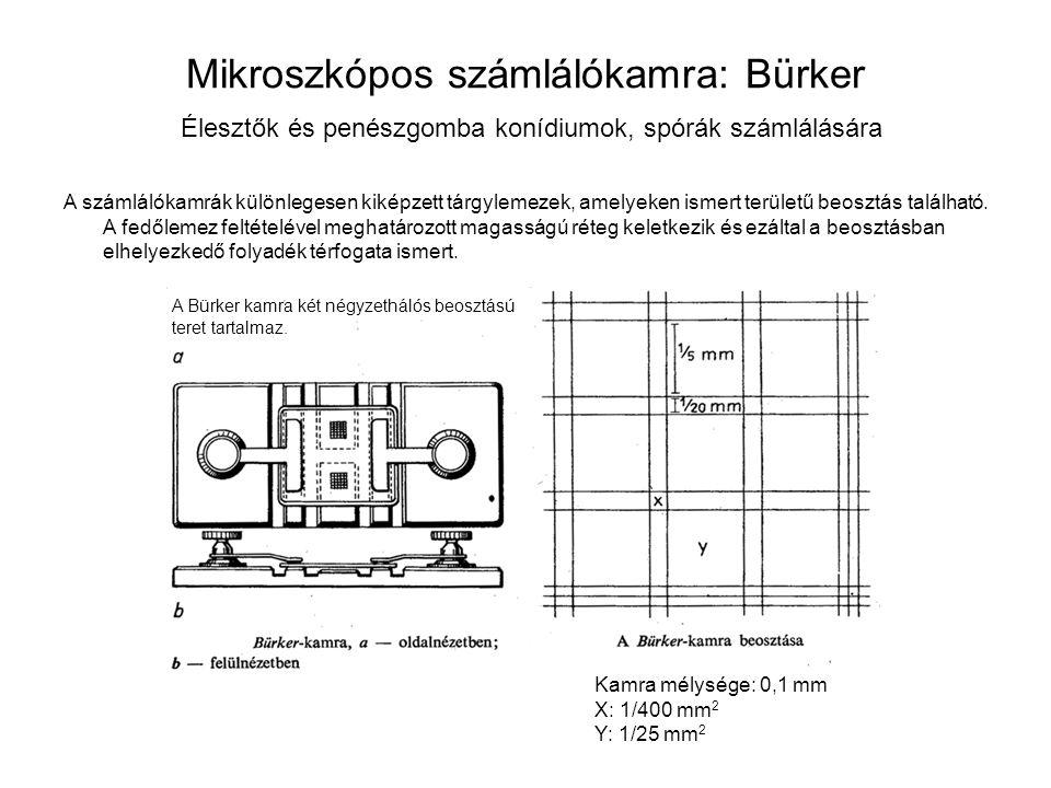 Mikroszkópos számlálókamra: Bürker Élesztők és penészgomba konídiumok, spórák számlálására