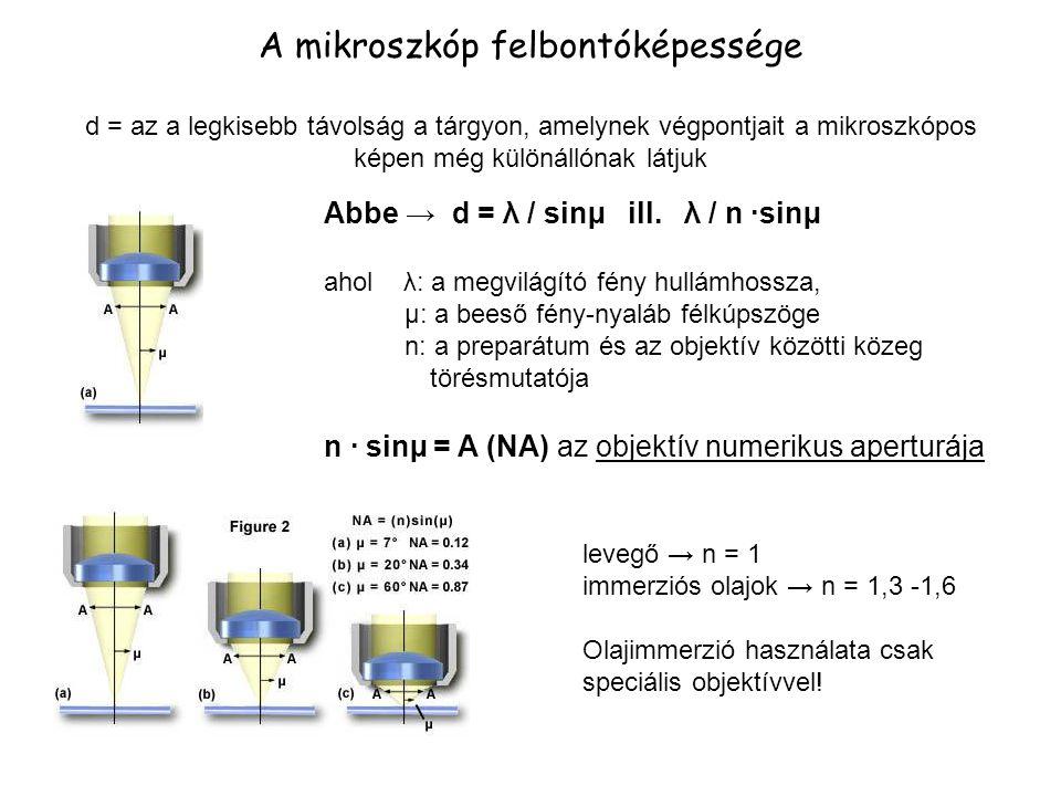 A mikroszkóp felbontóképessége d = az a legkisebb távolság a tárgyon, amelynek végpontjait a mikroszkópos képen még különállónak látjuk