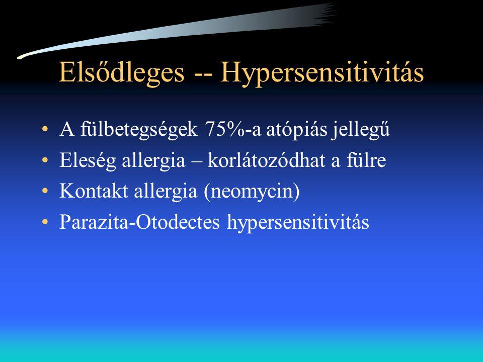 Elsődleges -- Hypersensitivitás