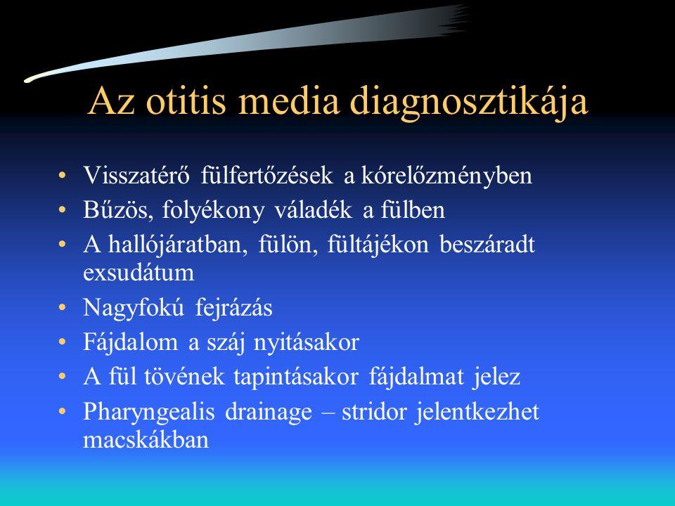 Az otitis media diagnosztikája