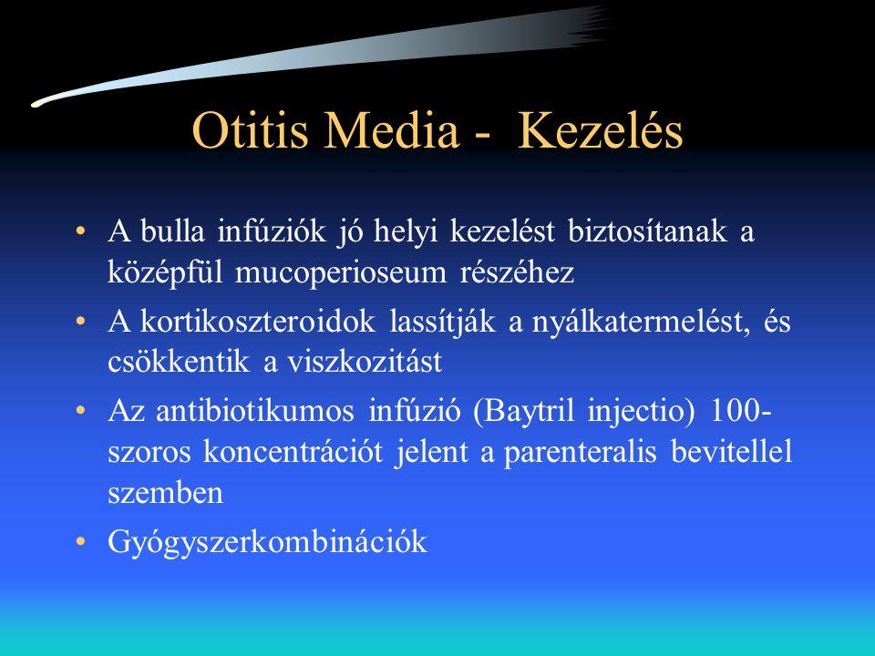 Otitis Media - Kezelés A bulla infúziók jó helyi kezelést biztosítanak a középfül mucoperioseum részéhez.