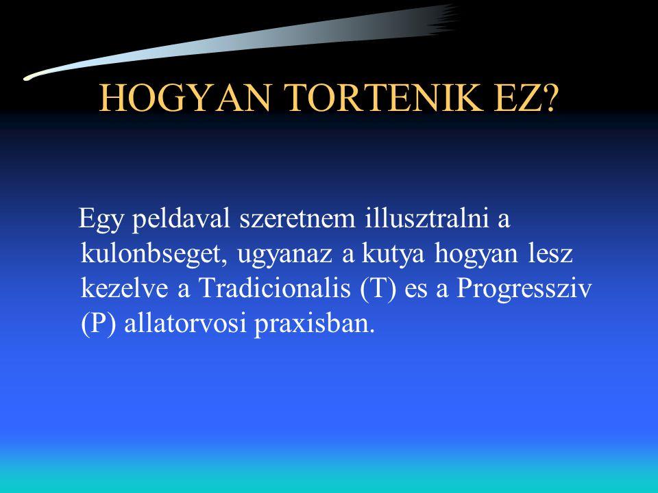 HOGYAN TORTENIK EZ