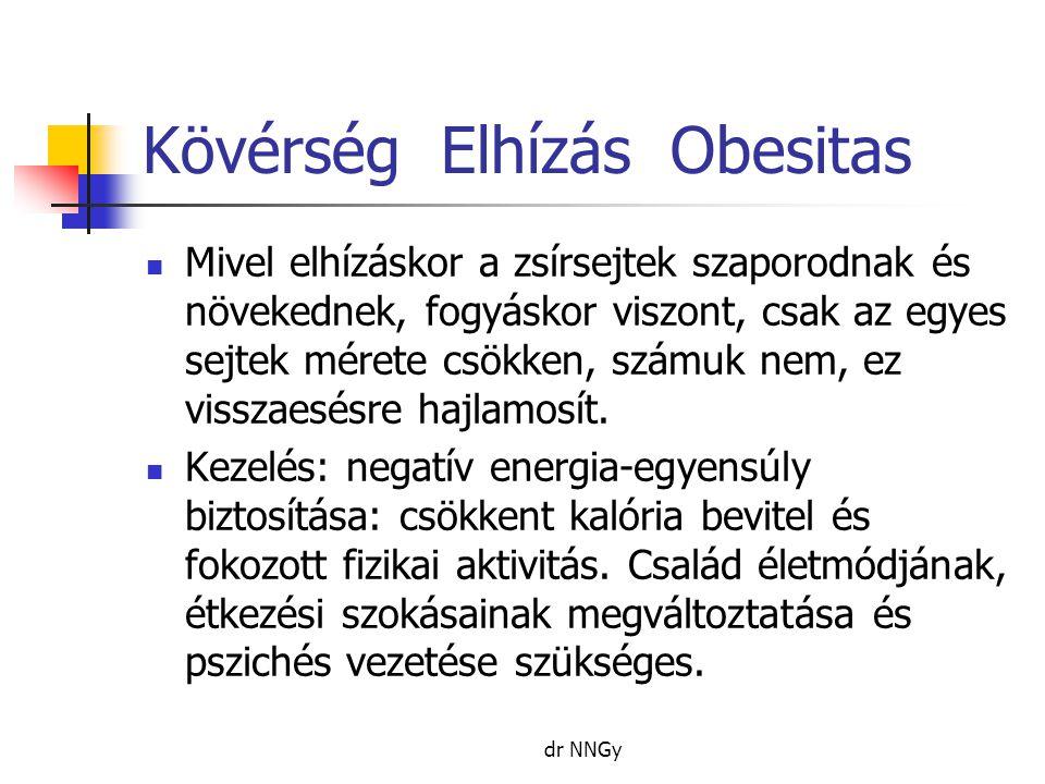 Kövérség Elhízás Obesitas