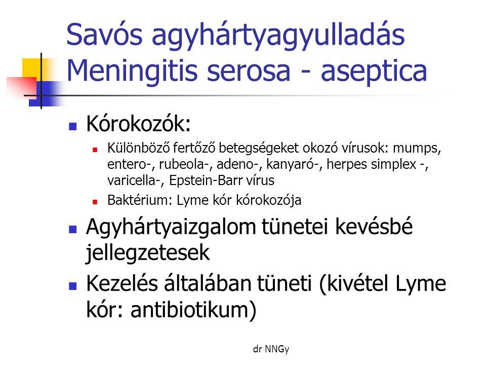 Savós agyhártyagyulladás Meningitis serosa - aseptica