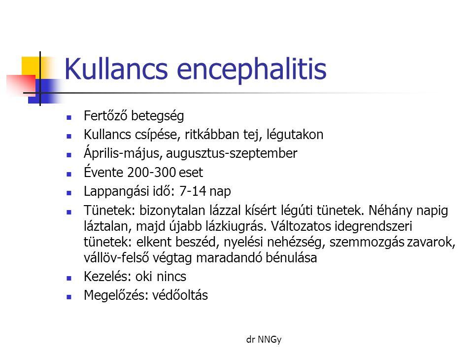 Kullancs encephalitis