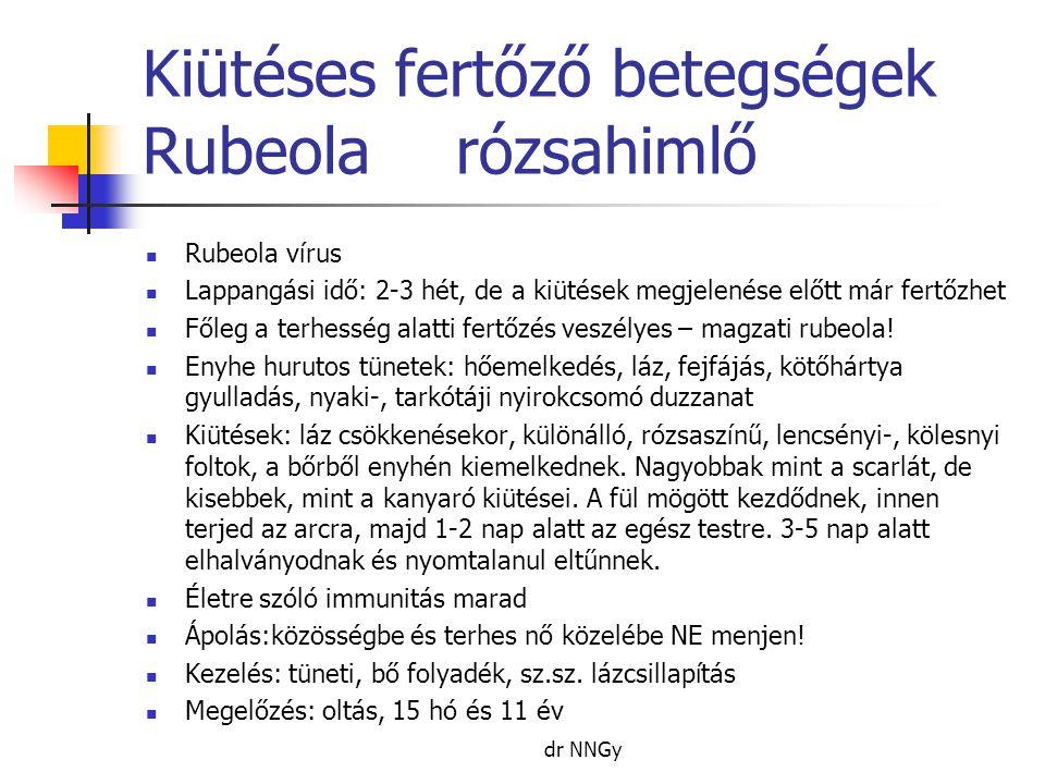 Kiütéses fertőző betegségek Rubeola rózsahimlő