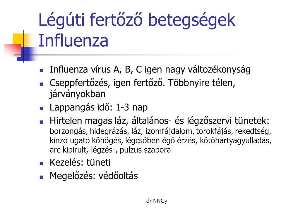 Légúti fertőző betegségek Influenza