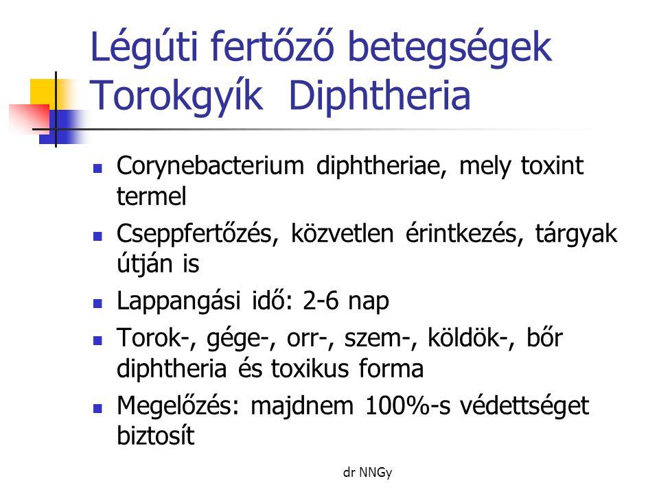 Légúti fertőző betegségek Torokgyík Diphtheria