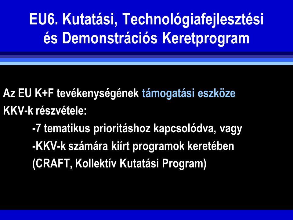 EU6. Kutatási, Technológiafejlesztési és Demonstrációs Keretprogram