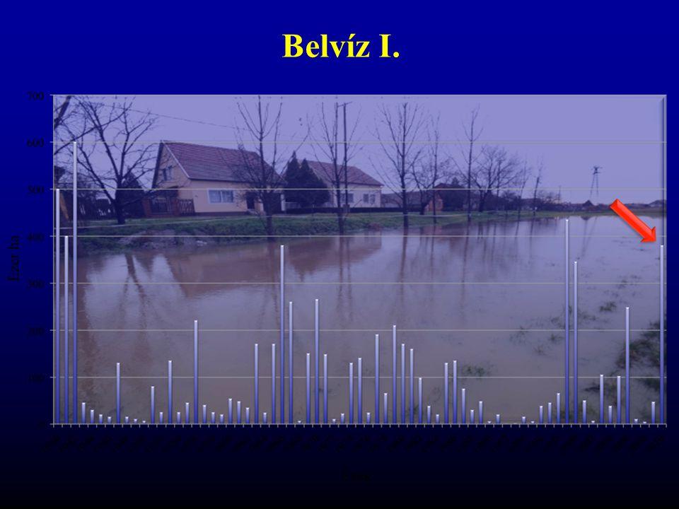 Belvíz I. 2010-ben az abszolút éves csapadékrekord megdőlt, a talaj felső rétegei telítettek, a csapadékot így már nem tudták elnyelni.