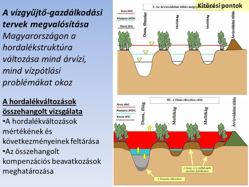 A vízgyűjtő-gazdálkodási tervek megvalósítása