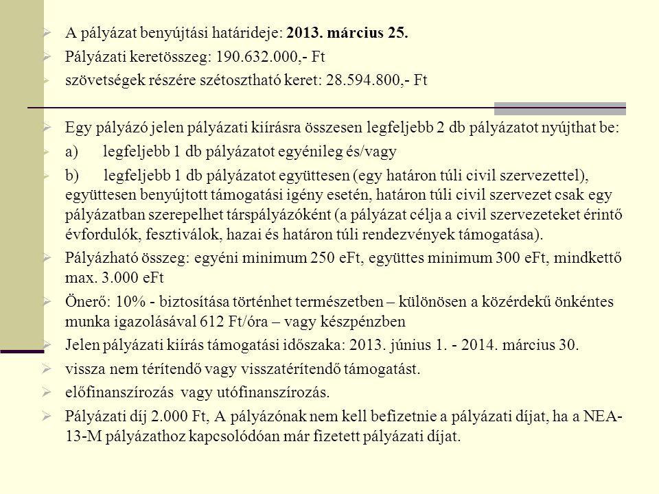 A pályázat benyújtási határideje: 2013. március 25.