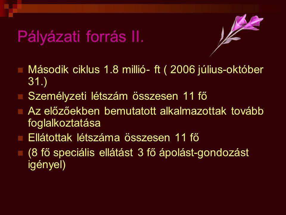 Pályázati forrás II. Második ciklus 1.8 millió- ft ( 2006 július-október 31.) Személyzeti létszám összesen 11 fő.