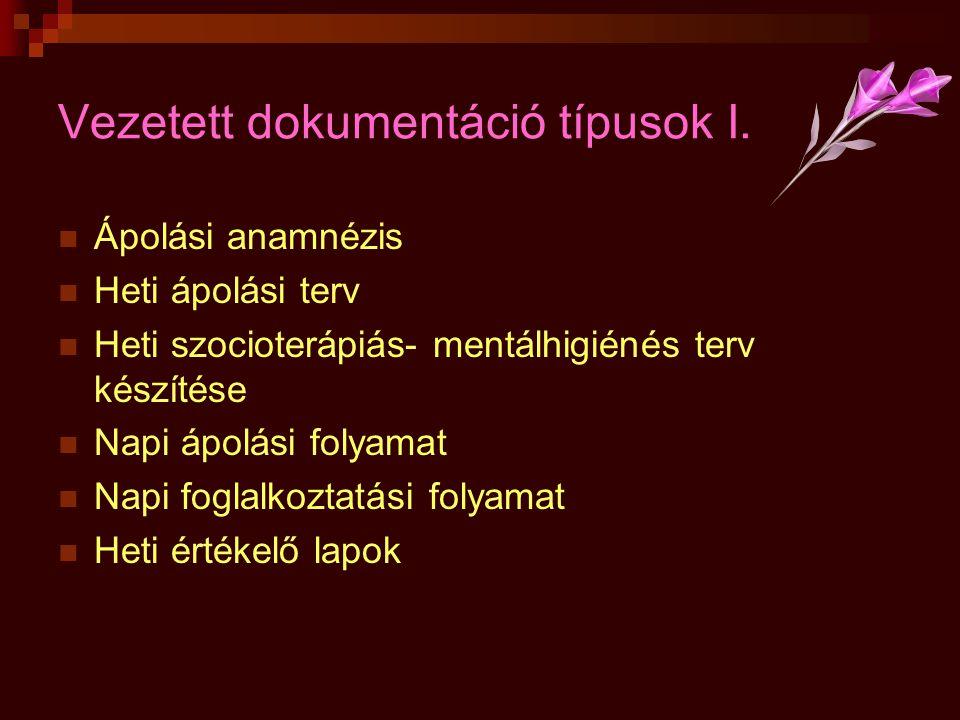 Vezetett dokumentáció típusok I.