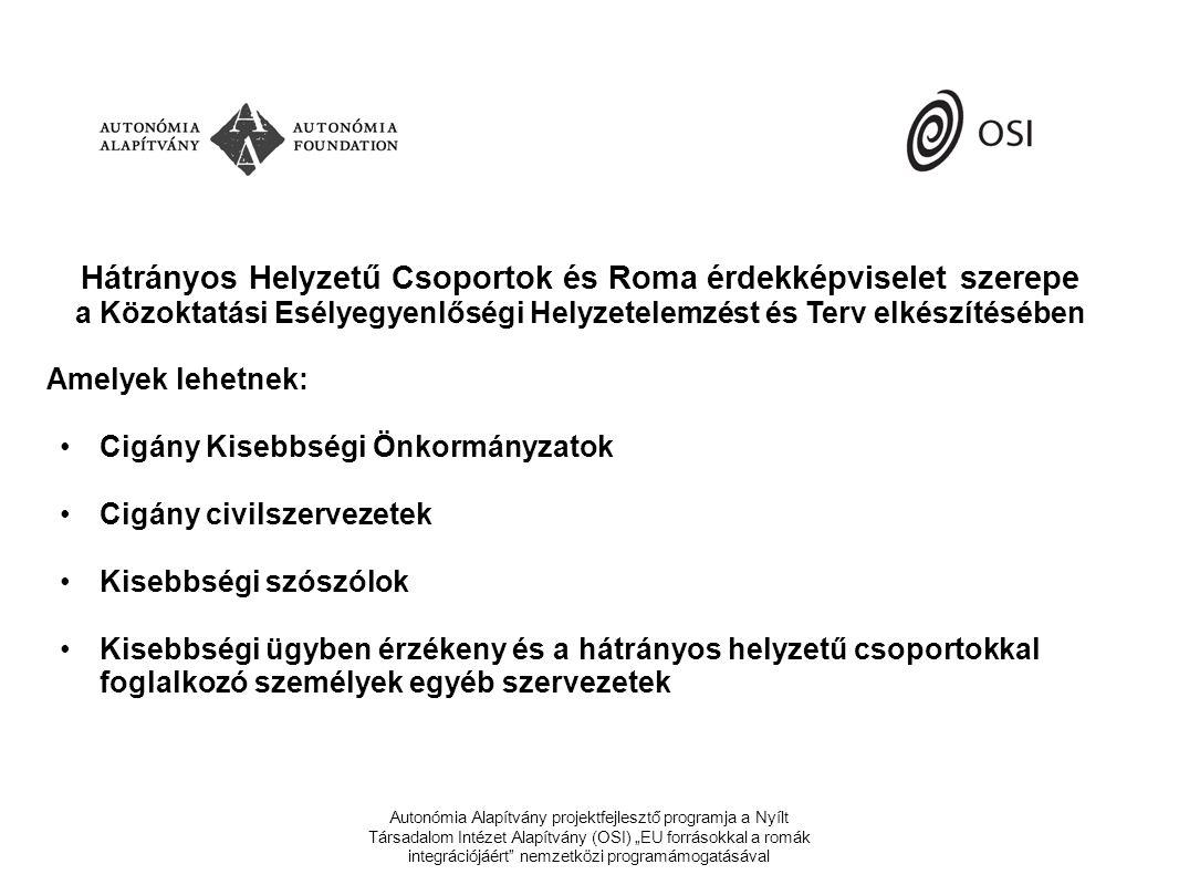 Hátrányos Helyzetű Csoportok és Roma érdekképviselet szerepe