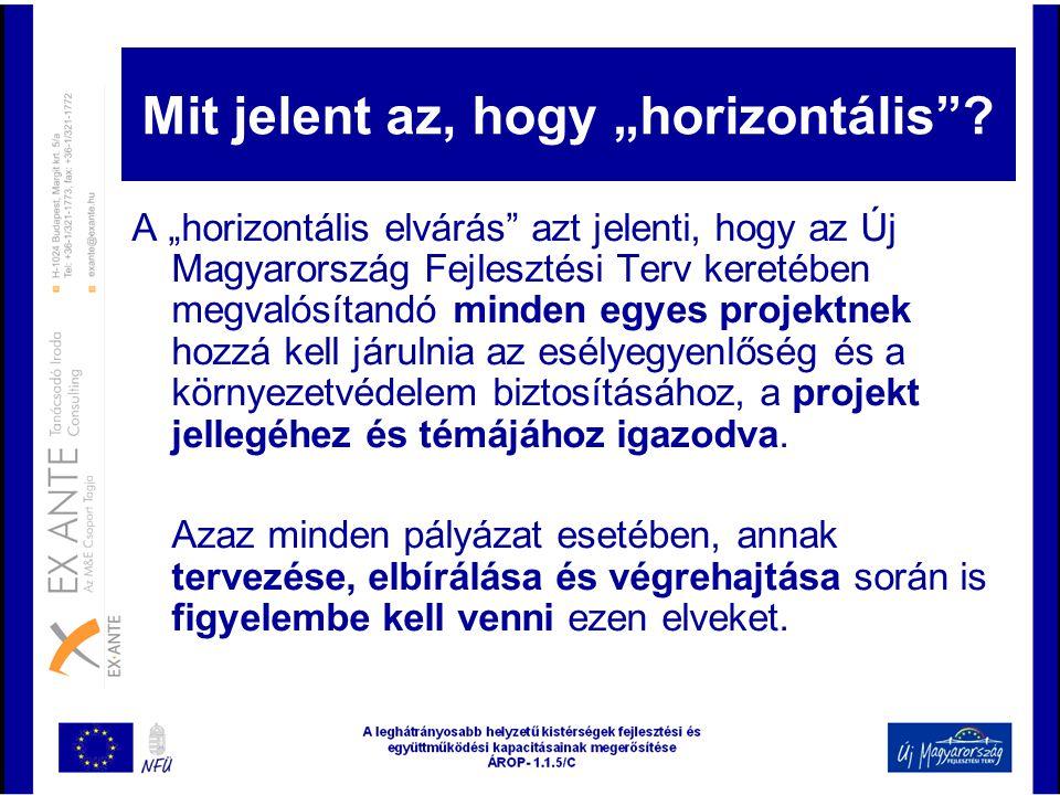 """Mit jelent az, hogy """"horizontális"""