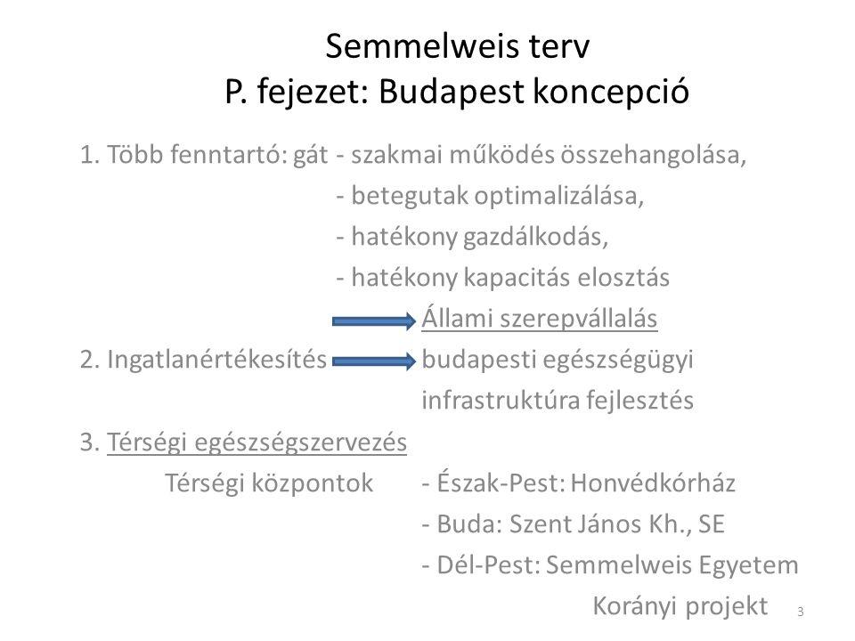 Semmelweis terv P. fejezet: Budapest koncepció