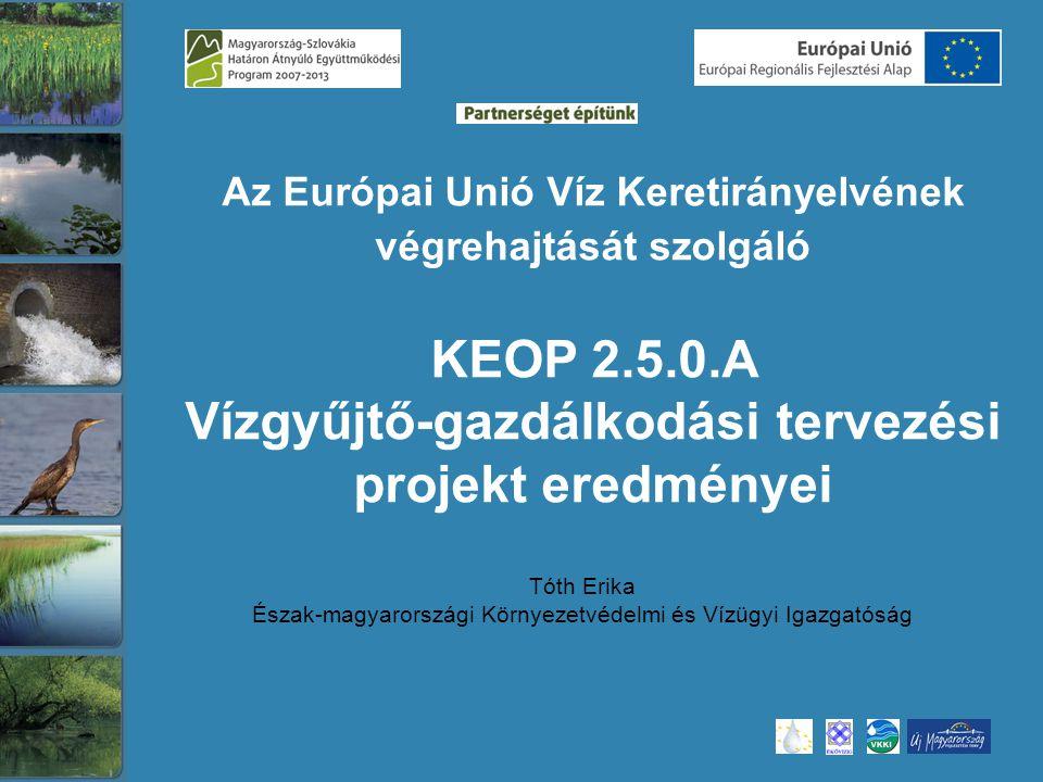 Tóth Erika Észak-magyarországi Környezetvédelmi és Vízügyi Igazgatóság